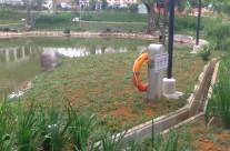 Kong Meng San Phor Kark See Manastery
